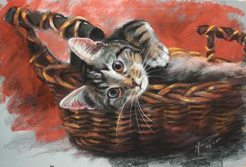 This lovely pastel by Ylli Haruni can be purchased at http://fineartamerica.com/featured/cat-in-the-basket-ylli-haruni.html. I didn't pay to use the image, so the least I can do it plug it.